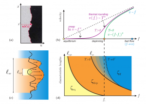 Linking transport and geometry. (a) Snapshot of a domain wall in a two-dimensional ferromagnet. (b) Typical velocity–force characteristics. (c) Crossover lengths l_opt and l_av representing the optimal excitation and the deterministic avalanches, respectively. (d) Geometric crossover diagram.